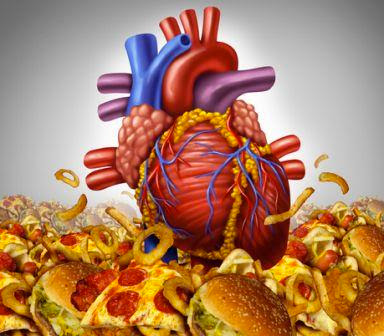 Junk Food is Harmful to Heart and Brain Health
