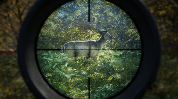 TheHunter Call Of The Wild ATV