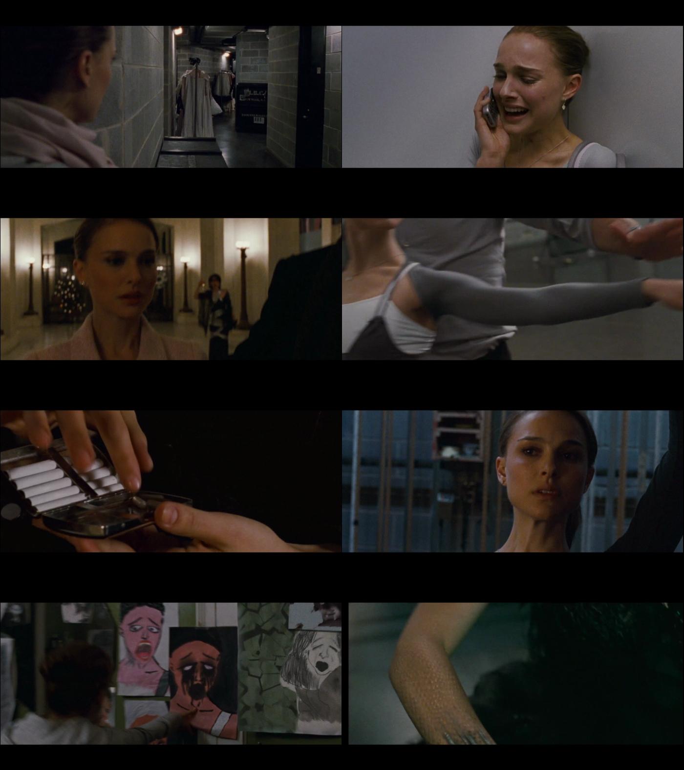 El Cisne Negro 1080p Latino