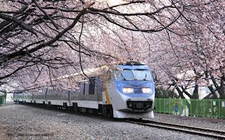 7 Jalur Kereta Api Paling Menarik di Dunia
