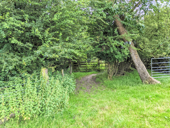 The gate leading to Offley footpath 13