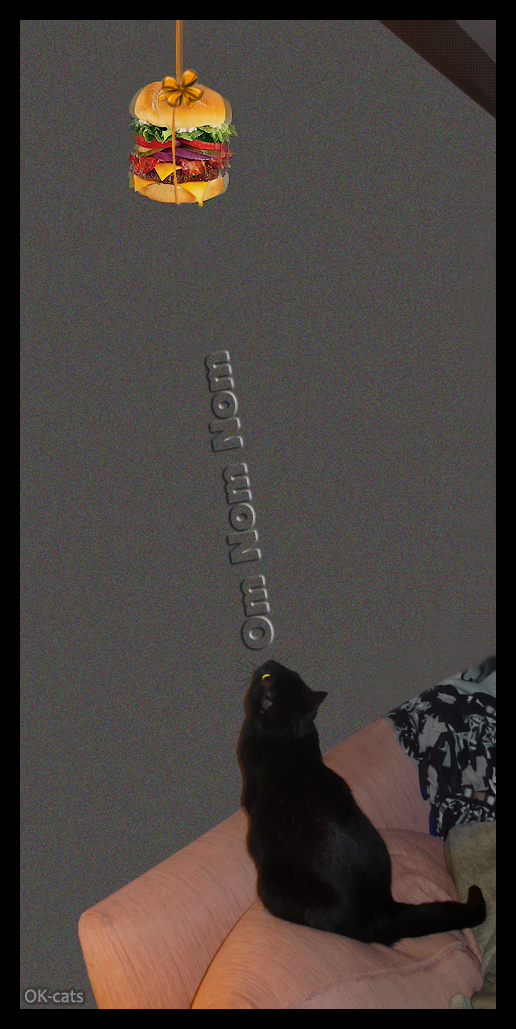 Photoshopped Cat GIF •  Do-want! • Black cat looking at delicious cheeseburger OM NOM NOM