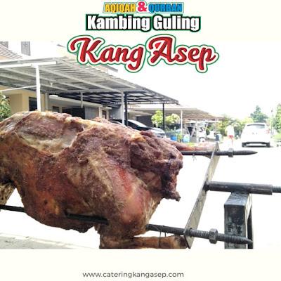 Kambing Guling Murah di Lembang Bandung,kambing guling murah,kambing guling di lembang bandung,kambing guling di lembang,kambing guling lembang bandung,kambing guling,