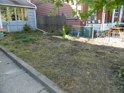 Toronto Little Italy Front Garden Cleanup After by Paul Jung Gardening Services--a Toronto Organic Gardening Company