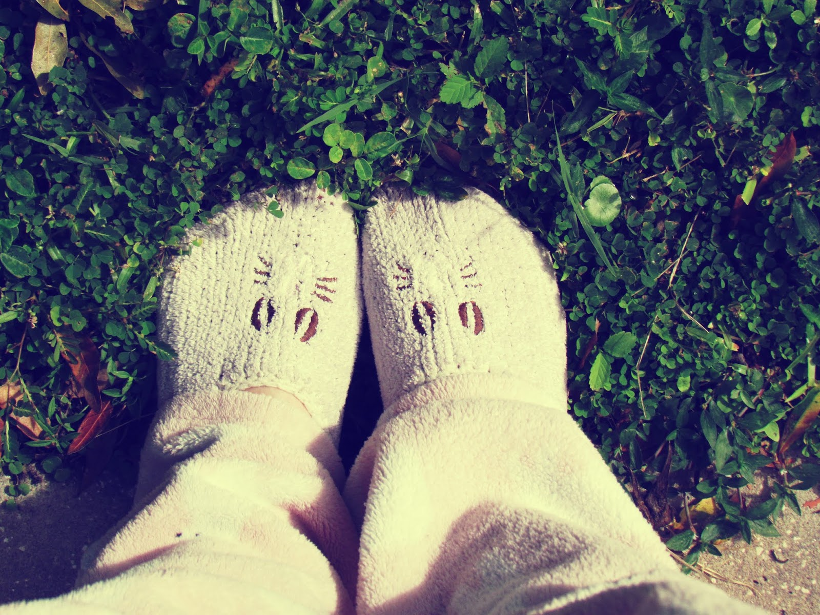 A girl wearing white bunny slippers in the bright green grass with clovers for good luck!