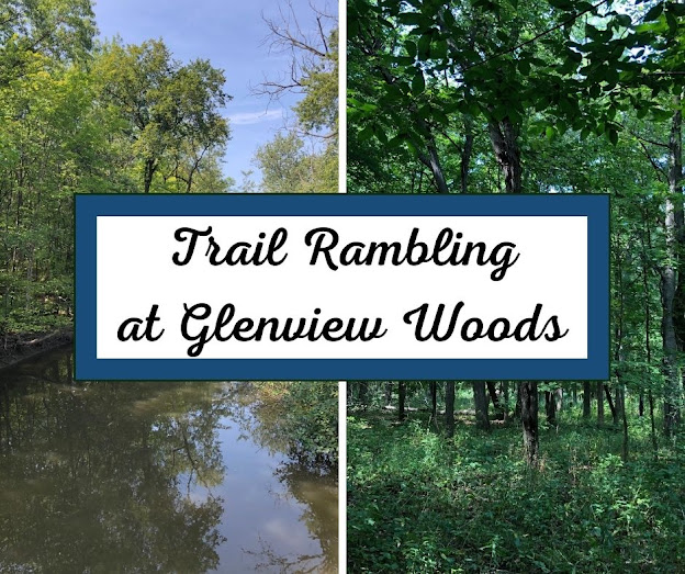 Meandering Wooded Footpaths of Glenview Woods section of Harms Woods in Illinois