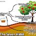 Sinergi dalam Sebuah Team Work (Studi Habit 6 dari The Seven Habit)