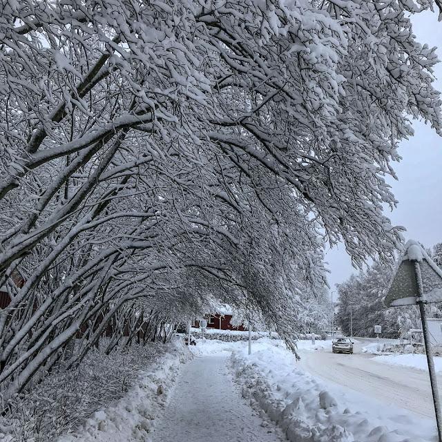 snö, storvretsvägen