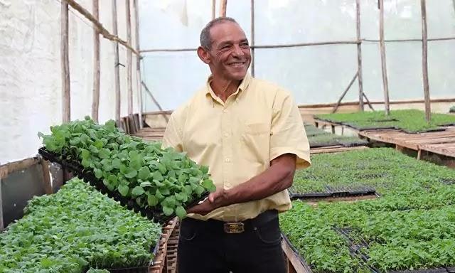 Pablo Guerrero y su vivero en Bonao