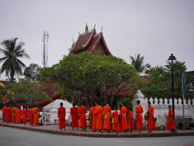 buddhist monks walking in a line on their morning alms rounds in Luang Prabang, Laos