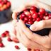 Kandungan Dan Manfaat Cranberry Untuk Kesehatan Tubuh