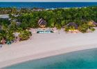 MouseCity -Paradise Beach…