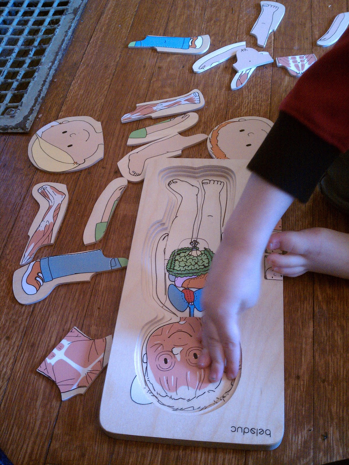 Preschool Body Activities