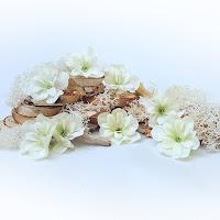 http://www.scrappasja.pl/p16919,shk-01-kwiaty-materialowe-biale-z-zielonym-srodkiem.html