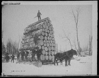 horses pulling load of logs