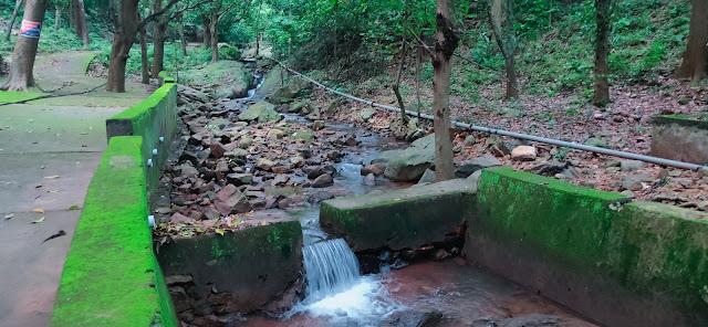 The View of Ashok Jhara