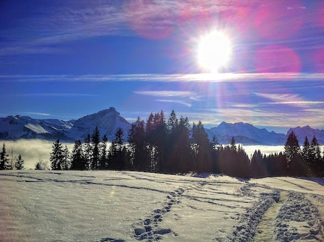 Zurich mountains covered in snow