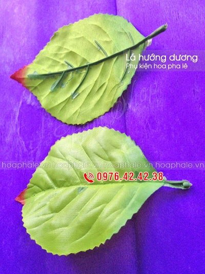 Phu kien hoa pha le tai Minh Khai