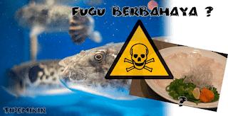 Ikan Fugu Berbahaya, Siapa orang pertama yang memakannya