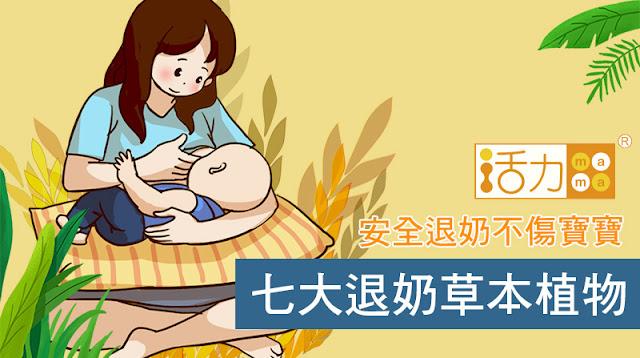 七大退奶食物助你回奶,輕鬆幫寶寶自然斷奶