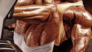 whey protein, kreatin, suplementi prodaja ogistra. suplementi povoljno.trening. misicna masa,prodaja suplementacije.velike ruke, veliki biceps