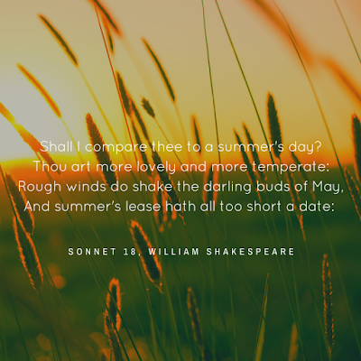 shakespeare sonnet 18 summers day