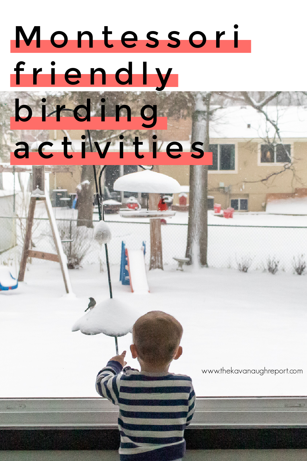 Easy, fun, low cost Montessori friendly birding activities that you can do from anywhere. These activities work for a variety of ages and interests.