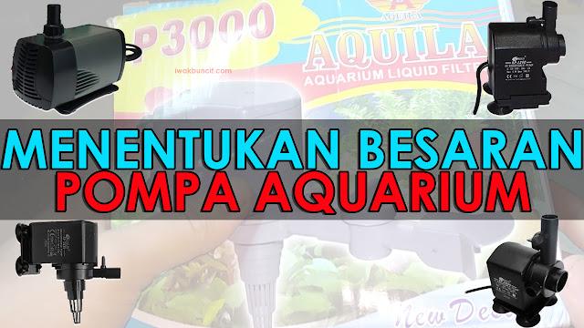 Kebingungan Cara Menentukan Besaran Pompa Aquarium yang Tepat? Simak Tips Berikut ini + Video