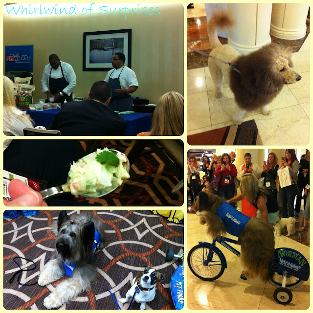 Celebrities at #BlogPaws: Kevin Sbraga, Scooter Dog Norman, Charles the Monarch