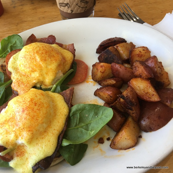 Applewood Bacon Benedict at Tomate Cafe in Berkeley, California