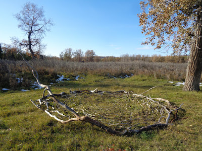 deadfall, land art, verna vogel, sheep river alberta