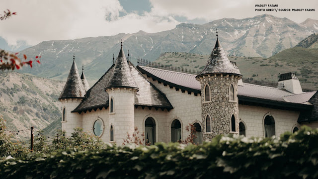 Fancy home with turrets and towers