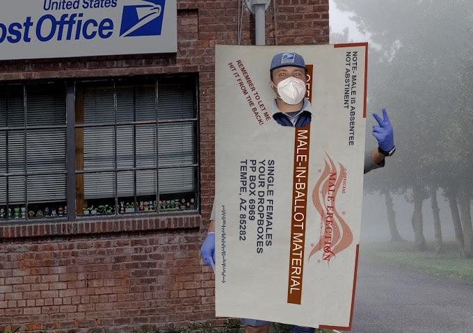 2020年の大統領選挙を語るうえで欠かせない郵送投票の仮装の人😂