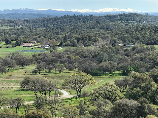 Pending with Multiple Offers - 34 Acres on Gold Hill Road in Placerville