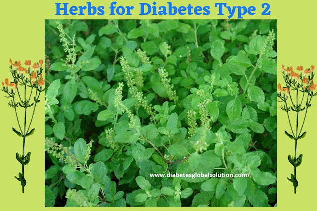 19 Herbs for Diabetes Type 2