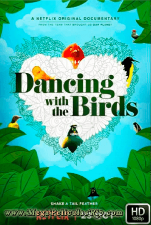 Dancing With The Birds [1080p] [Latino-Ingles] [MEGA]