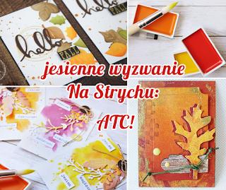 http://blog.na-strychu.pl/2016/10/wymiana-atc/