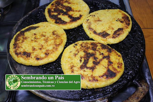 Recetas colombianas con zapallo