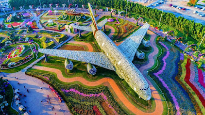 Dubai Miracle Garden Named the Largest Flower Garden in the World