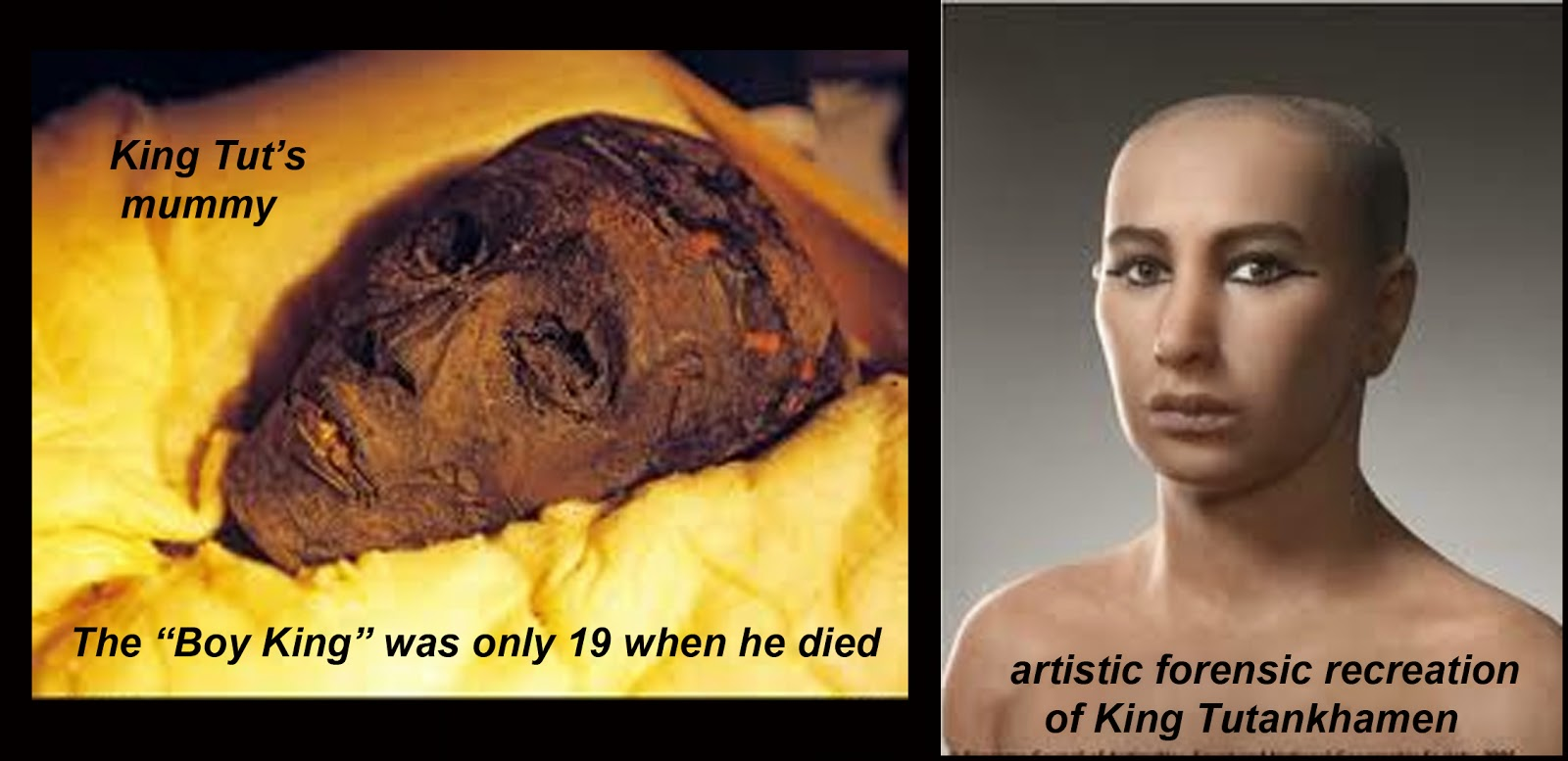 Anita Jo Intenzo-Haunted Author: KING TUT-DOOMED AT BIRTH