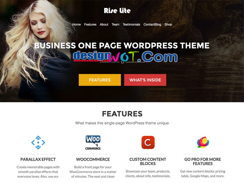 Rise Lite Full Screen WordPress Theme