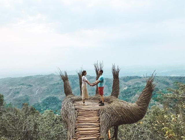 Bàn tay khổng lồ giữa rừng Pengger Pine, Indonesia