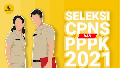 Pengumuman Hasil Seleksi Administrasi Berkas CPNS dan PPPK 2021 Seluruh Kabupaten di Sulsel