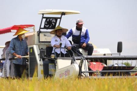 Tiga Kementerian Kerja Sama Perkuat Sektor Pertanian dari Hulu ke Hilir