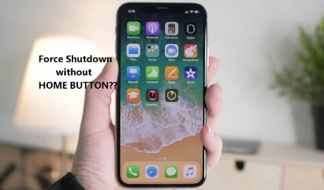 Force Shutdown iPhone without Home Button