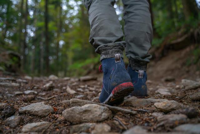 Künischer Grenzweg auf den Osser | Wanderweg La1 im Lamer Winkel | Wandern im Bayerischen Wald | Naturpark Oberer Bayerischer Wald 03
