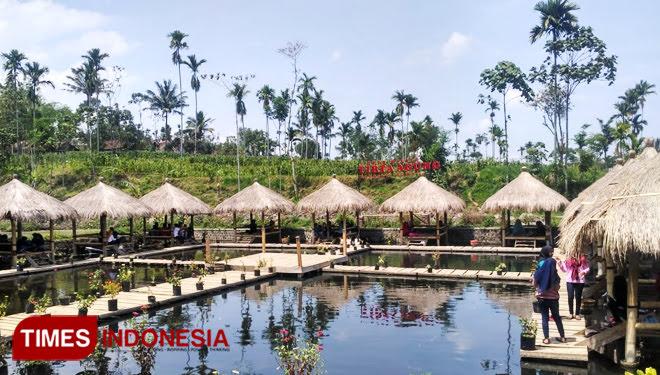 Wisata desa Tirta Agung Bondowoso, murah meriah