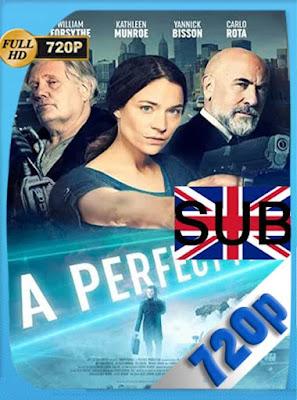 A Perfect Plan (2020) HD[720P] subtitulada [GoogleDrive] DizonHD