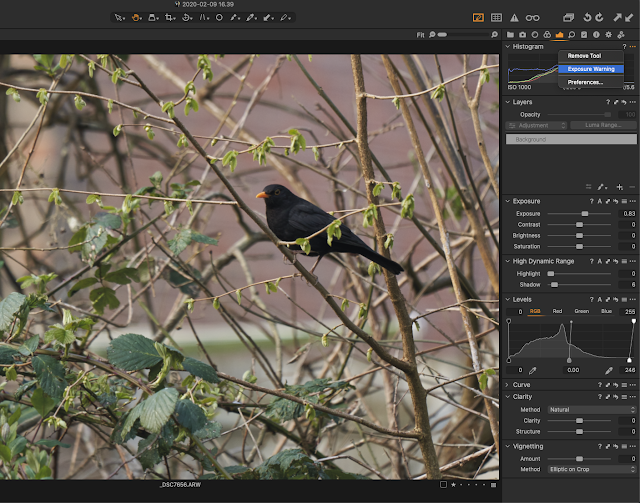 Capture One Software - highlight exposure warning and basic edit used
