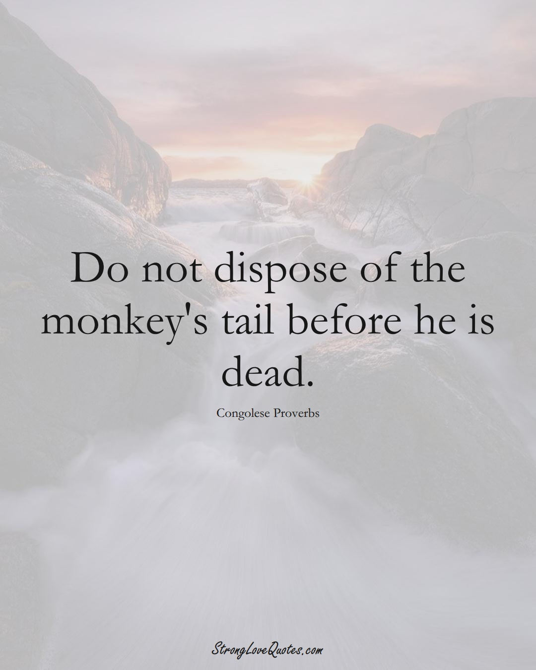 Do not dispose of the monkey's tail before he is dead. (Congolese Sayings);  #AfricanSayings